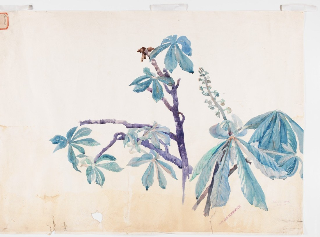 """Chestnut Leaves.' 1898-1982."