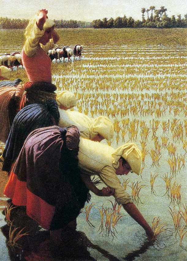 """""""In the Rice Fields."""" 1901."""