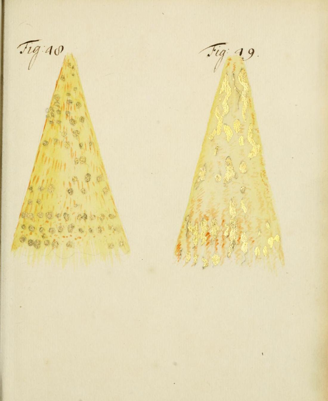 Figures 48 and 49. Page 285.