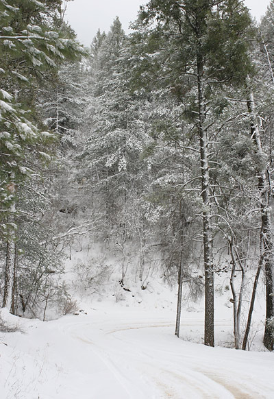 mtn_snow1
