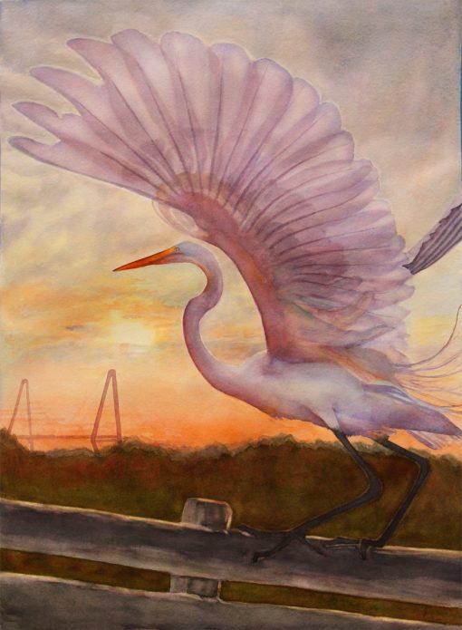 preening egret watercolor