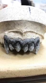 Gargoyle Teeth