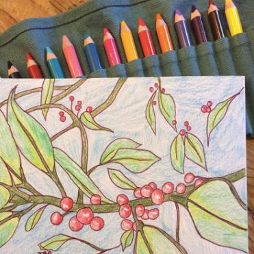 Botanical Walk and Draw