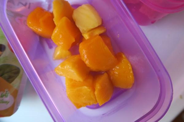 Frozen Mango Kids Lunch