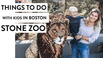 Brick Safari and The Stone Zoo | Boston Kid Things To Do