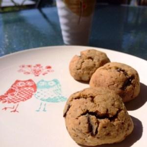 orange macadamia chocolate biscuits
