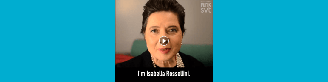 Sarah Gezien - Isabella Rossellini, women's dreams changed