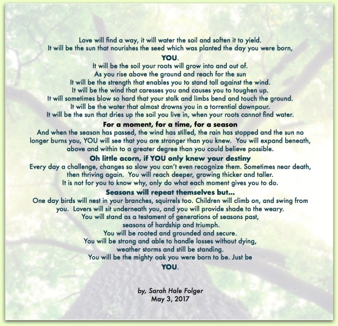 sarah hale folger you - YOU (a poem for my daughters)