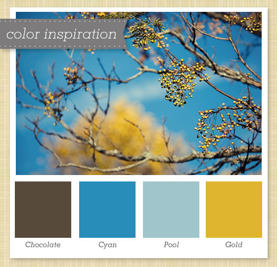 Brown Blue And Gold Color Palette Sarah Hearts