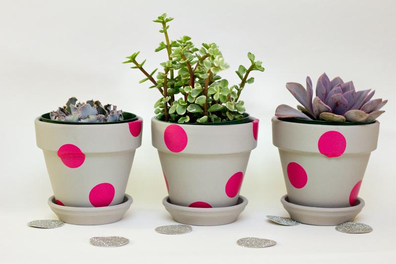 easy polka dot painted terracotta pots