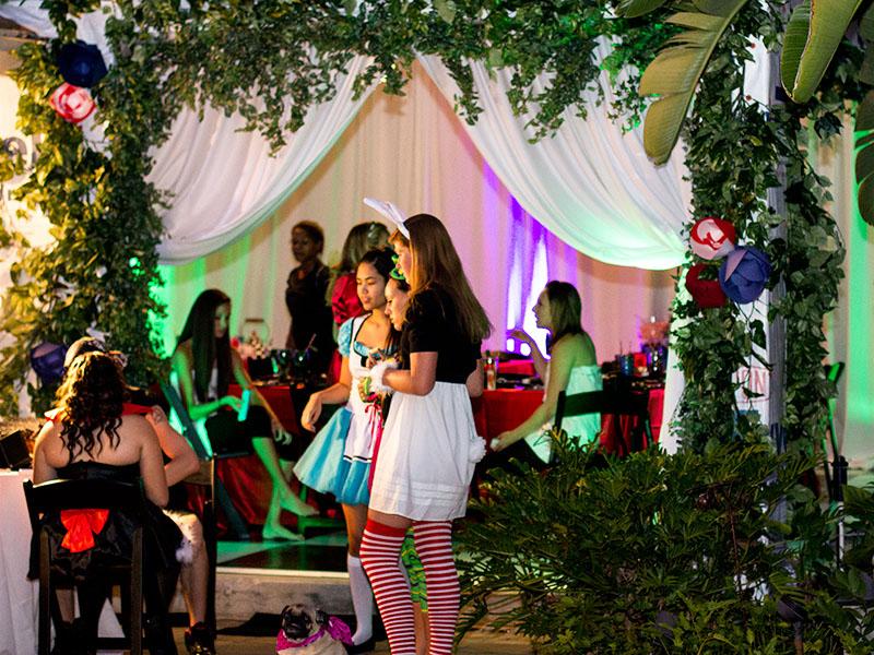 Alice in Wonderland Teen Party
