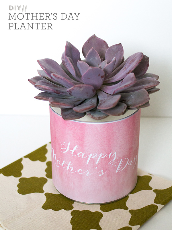 Simple DIY Mother's Day Planter Gift | Sarah Hearts for 6th Street Design School