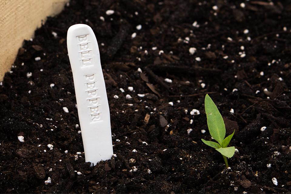 DIY Clay Stamped Garden Markers