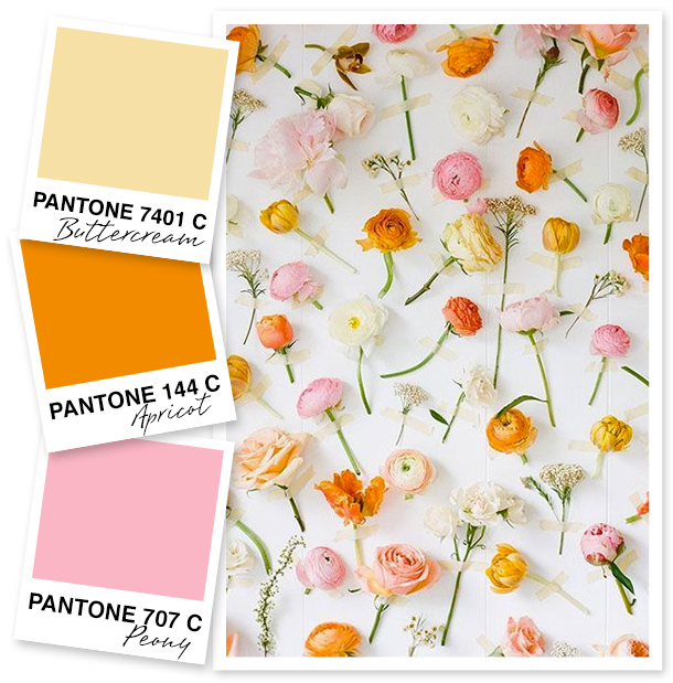 Soft Yellow, Orange and Pink Color Palette - Sarah Hearts