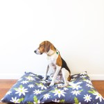 Diy Easy To Sew Zippered Dog Bed Cover Sarah Hearts