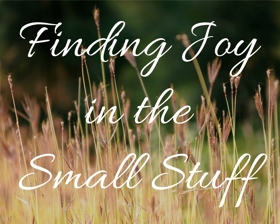 Finding Joy In The Small Stuff