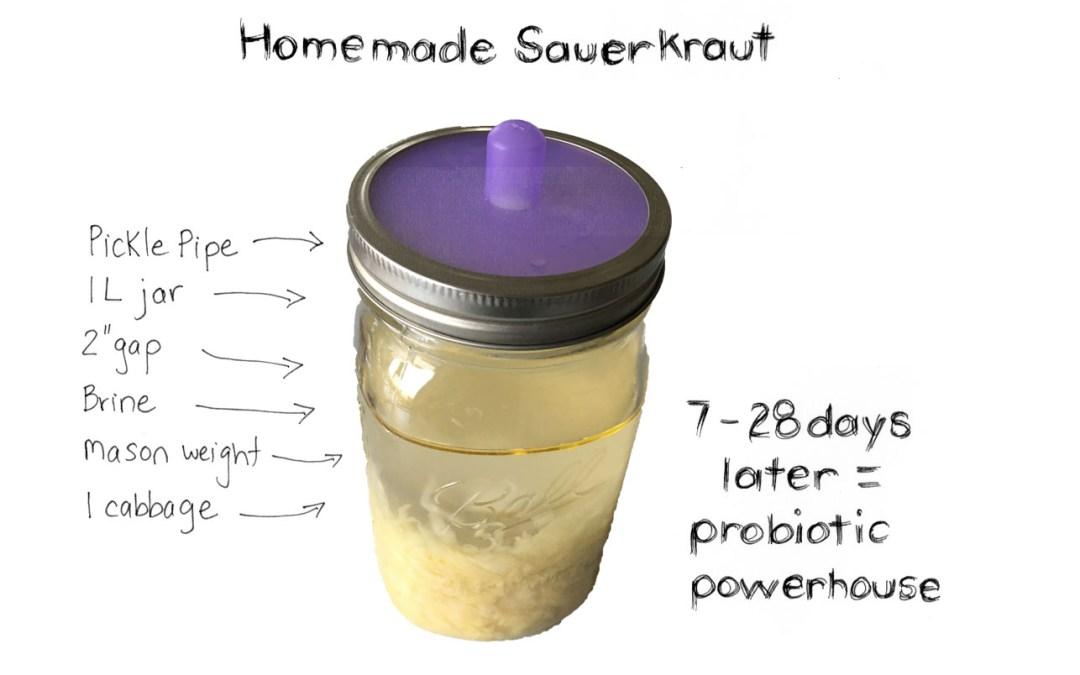Fermenting your own Sauerkraut – a party for your Gut Flora