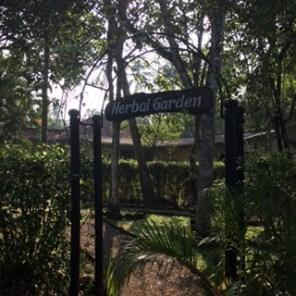 Sri Lanka DG herbal garden