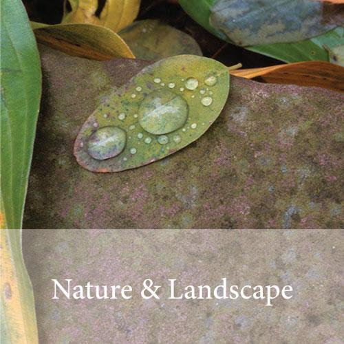 nature-button