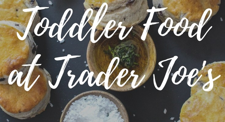 The Best Toddler Food at Trader Joes