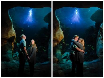 Tennessee Aquarium Engagement Photos_1724