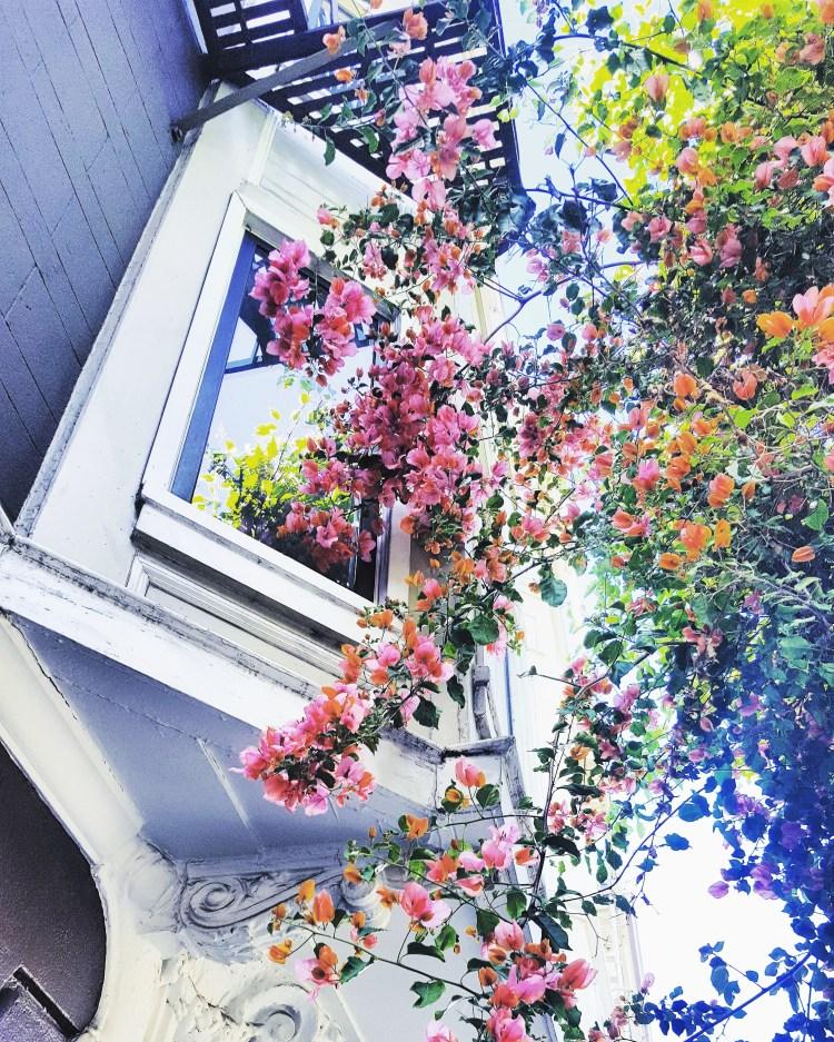 sanfrancisco-florals-springtime