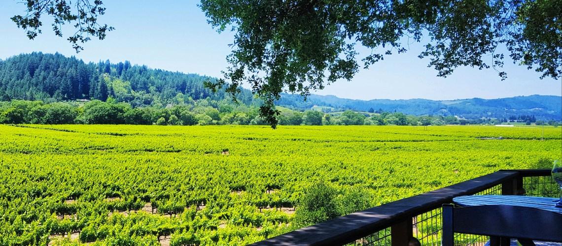 wine-country-dry-creek-valley-vineyards