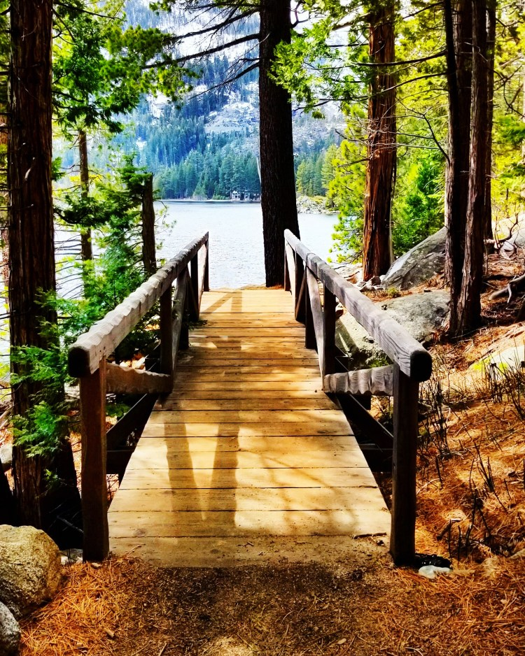 Rubicon Trail Bridge