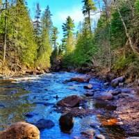 Exploring Minnesota's North Shore: A Travel Guide