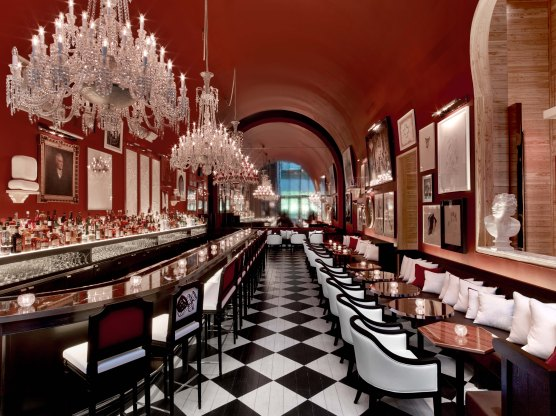 Baccarat Hotel NYC March 2015 (124)