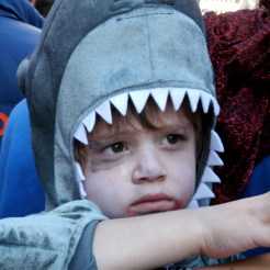 Portrait of a small child wearing a shark costume and white face make up being held by an adult