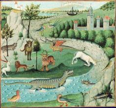 Book of Nature BNF MS Français 22971 f 15v