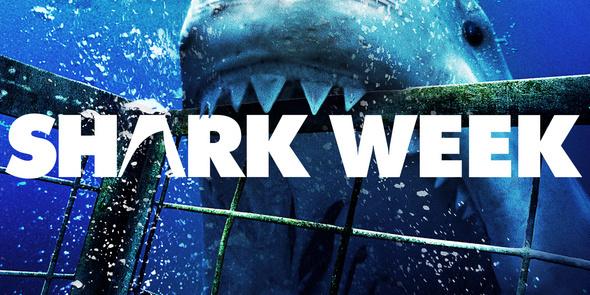 It's Shark Week!