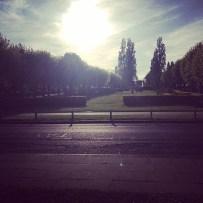 hertfordshire, nature, england, uk, photography,travel