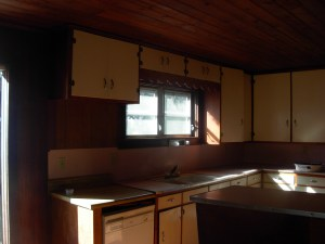 1st Pictures- Kitchen