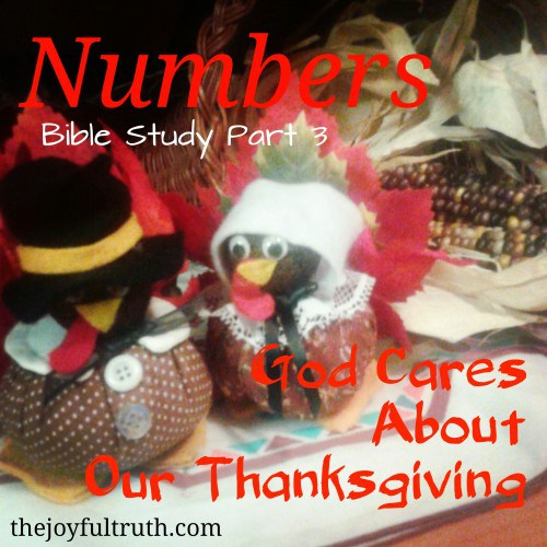 Shared From The JoyFul Truth – God Cares About Our Thanksgiving.