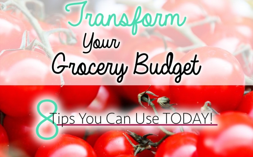 Transform Your Grocery Budget with These 8 Simple Changes – Chaos 2 Peace