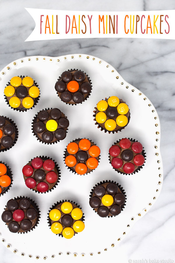 Fall Daisy Mini Cupcakes – delightful mini cupcakes crowned with delish chocolate buttercream and beautified with fall M&M's candies placed in the shape of daisy flowers.