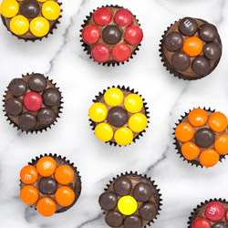 Fall Daisy Mini Cupcakes