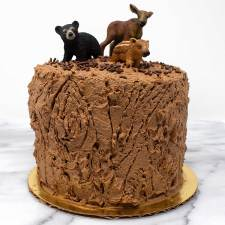 Tree Stump Smash Cake
