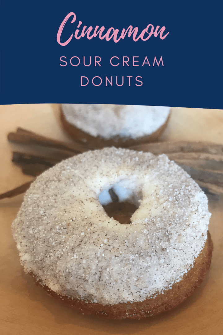 Cinnamon Sour Cream Donuts {Baked}