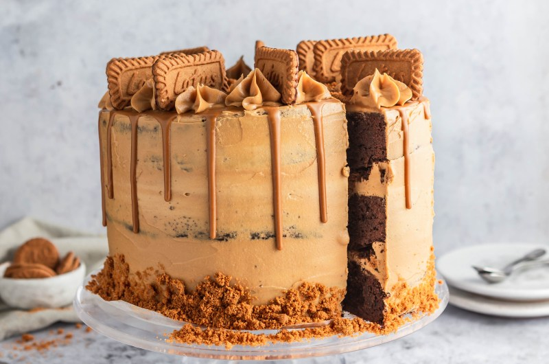 Chocolate brownie cake with Biscoff cookie butter frosting