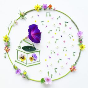 Botanical Harmonies