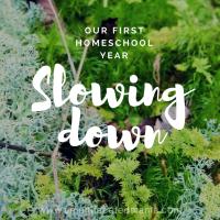 Homeschool Adventures: Slowing Down