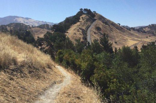 mt diablo trail