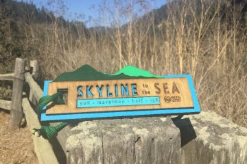 Skyline To The Sea Marathon