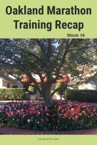 oakland marathon training recap week 14