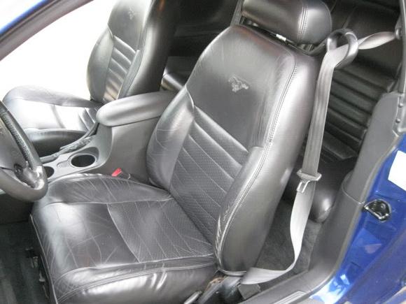 Sara L.: 2002 Mustang GT &emdash;