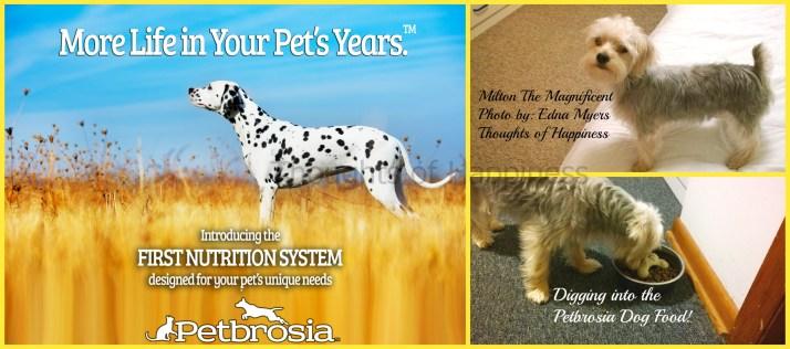 Petbrosia Collage 2