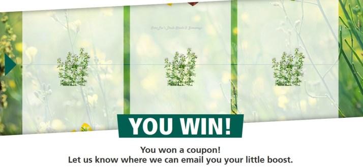 couponwin1114614